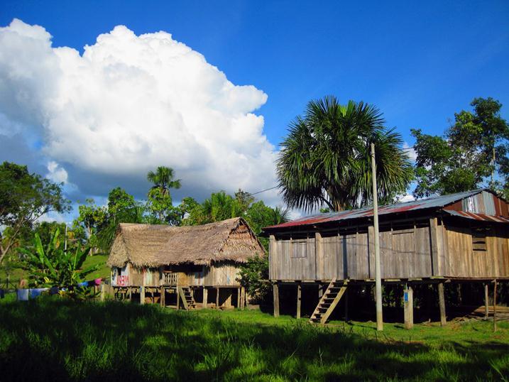 Дома на сваях в Амазонии фото