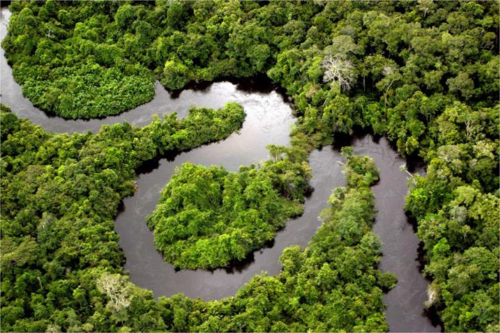 По рекам Амазонии фото