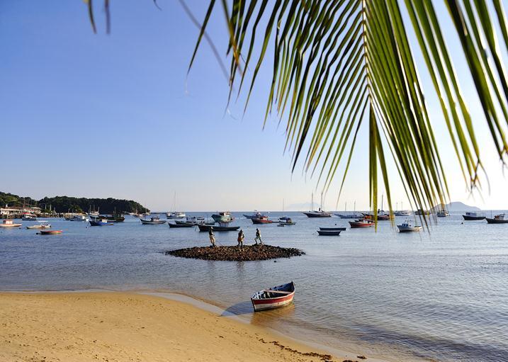 Природные зоны Бразилии