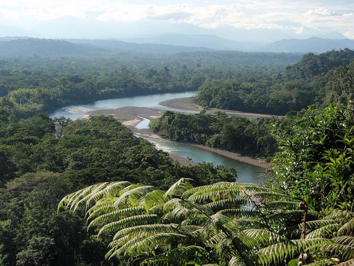 Амазонка и рио негру