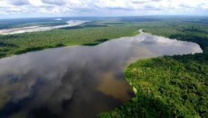 Путешествие по Амазонии фото